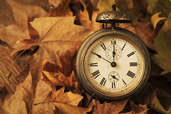 Pocket watch in fall leaves